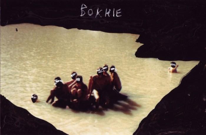 SADF-photo-Swimming-BOKKIE1-800x524
